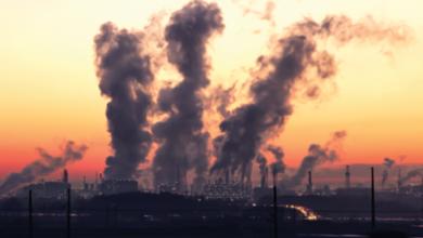 Фото Названы лучшие и худшие по экологической обстановке регионы РФ