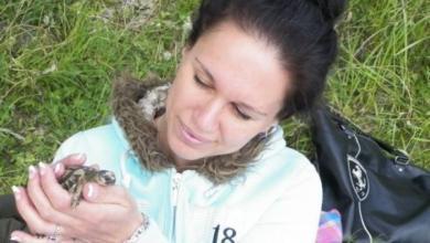 Фото Черепашьими темпами. За 5 лет петербурженка спасла пять сотен рептилий
