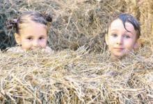Фото Запахи свежего сена. В Серебряном Бору прошёл ежегодный «Эко-пикник»