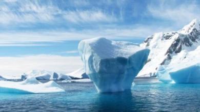 Фото Россия и ЮАР договорились сотрудничать в Антарктике