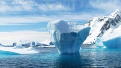 Фото От Гренландии откололся огромный айсберг