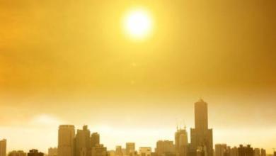 Фото В Токио температура воздуха впервые за историю наблюдений поднялась до +40