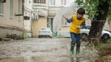 Фото В трех районах Приморья ввели режим ЧС из-за подтоплений