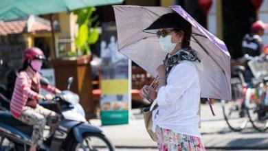 Фото Оливье с лягушатиной. Как живут русские женщины во Вьетнаме