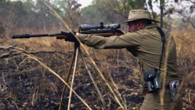 Фото Африка в миниатюре. Как проходит охота в Камеруне