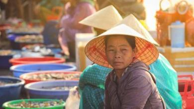 Photo of «Клеймите вашего краба!». Как «разводят» туристов во Вьетнаме