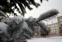 Photo of В Кемеровской области выпал первый снег