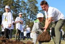Photo of В Подмосковье стартовала акция «Наш лес. Посади свое дерево»