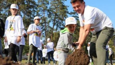 Фото В Подмосковье стартовала акция «Наш лес. Посади свое дерево»