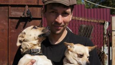 Фото Димина «Верность». Как житель Смоленска спасает бездомных животных
