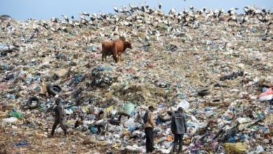 Photo of Объем мусора на планете вырастет на 70% к 2050 году – Всемирный банк