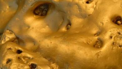 Фото В Австралии обнаружен самый крупный золотой самородок – СМИ