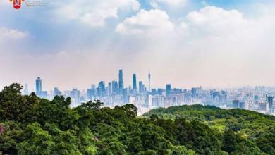 Photo of 10 часов полета. Как добраться до китайского Города цветов?