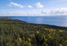 Photo of Лесной форум. Как сохранить среду обитания?