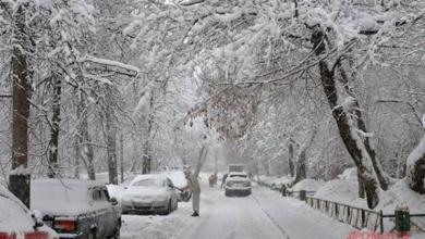 Фото В ночь на четверг в Москве ожидается сильный снегопад