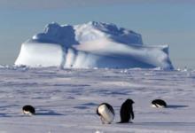 Фото Американец первым в истории пересек Антарктиду на лыжах