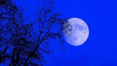 Фото Россияне 21 января смогут увидеть лунное затмение