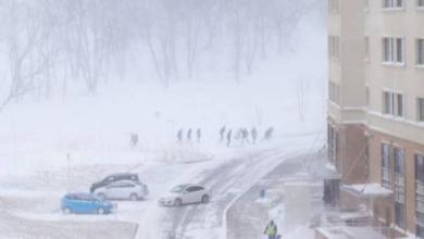 Фото Синоптики прогнозируют метель и гололедицу в Москве и Подмосковье