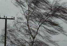 Фото В Москве на 15 февраля объявлен желтый уровень погодной опасности