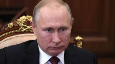 Фото Путин поручил решить судьбу косаток из «китовой тюрьмы» в Приморье к марту