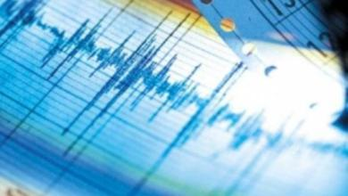Фото Более 10 землетрясений было зафиксировано у берегов Камчатки за сутки