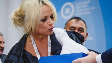Фото Памела Андерсон попросила правительство РФ о помощи косаткам в Приморье