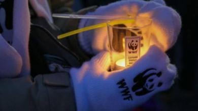Фото ВЦИОМ: Более половины россиян знают об акции «Час Земли»