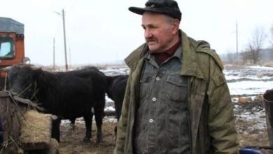Photo of Робинзон на Дону. Бездомный фермер 8 лет скитается с коровами по степи