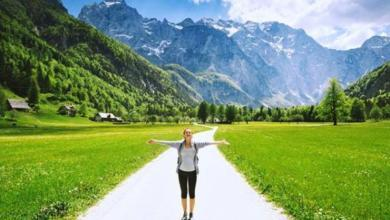Фото Путь свободен. В какие страны из России можно поехать без визы?