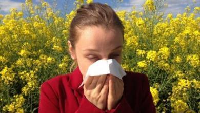 Фото Синоптики предупредили о неблагоприятной для аллергиков погоде в Москве