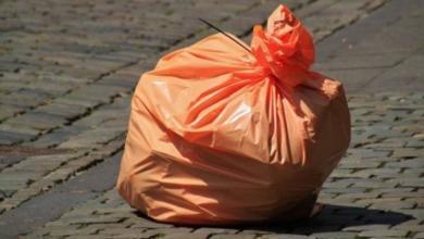 Фото Депутат Госдумы предложил запретить полиэтиленовые пакеты с 2025 года
