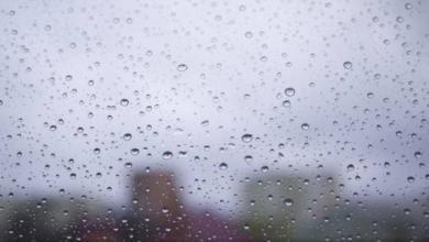 Фото Москвичей в субботу ожидает облачная погода с дождем
