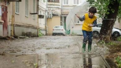 Фото В выходные дни в Москве ожидаются дожди и грозы
