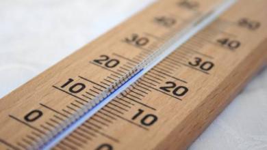 Фото Синоптики прогнозируют начало лета в России теплым