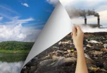 Фото Национальная экология. Какие приоритетные задачи решаются сейчас?
