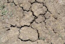 Фото В 21 департаменте Франции действуют ограничения на использование воды