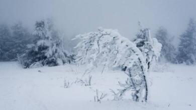 Фото В горах Якутии выпал снег