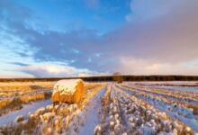 Фото Метеорологи: каждое последующее пятилетие будет теплее предыдущего