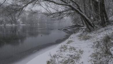 Photo of В воскресенье в Москве ожидается до одного градуса тепла