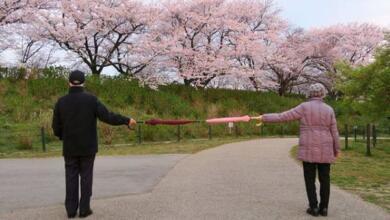 Фото Власти Японии выплатят бомжам наравне с другими гражданами по $930