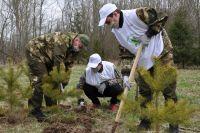 Фото Сады памяти в Берлине. В Германии состоялись мемориальные посадки деревьев