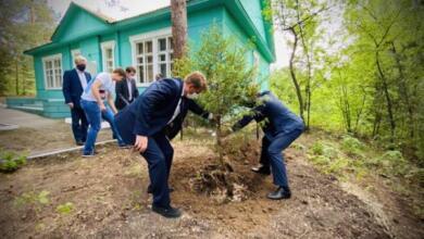 Фото Дело чести. В акции «Сад памяти» принял участие Владимир Путин