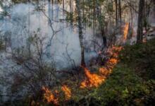 Photo of В Красноярском крае потушен пожар в районе удалённой деревни