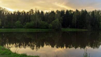 Photo of Пойдем новой тропой. Как в России развивают экотуризм
